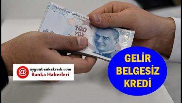 Gelir Belgesiz Kredi 2020 (Hemen Başvur)