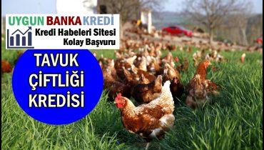 Tavuk Çiftliği Kredisi 2019 (3.000.000 TL'ye Kadar)