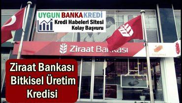 Ziraat Bankası Bitkisel Üretim Kredisi (Tarla, Bahçe)